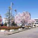 岩倉駅(愛知県) 歯医者